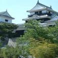 松山城(別名:勝山城・金亀城)