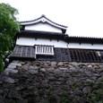 福岡城(別名:舞鶴城)